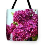 The Branch Of A Purple Lilac Tote Bag