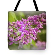 The Branch Of Lilac Tote Bag