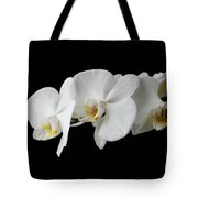The Branch Of White Orchid On Black Background Tote Bag