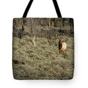 The Bull Elk Tote Bag