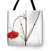 The Bunch Of Winter Rowan Tote Bag