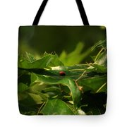 The Busy Lady Bugs Tote Bag