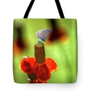 The Butterfly And The Coneflower Tote Bag