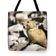The Call Of The Pika Tote Bag