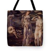 The Calling Of Perseus 1898 Tote Bag