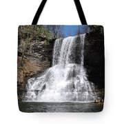 The Cascades Falls II Tote Bag