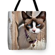 The Cat A Purrfect Carnivore Tote Bag by Christine Till