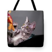 The Cat And The Fish Tote Bag