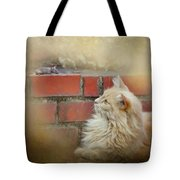 The Cat And The Mouse Tote Bag