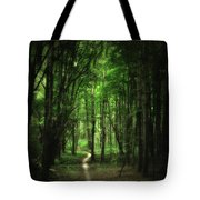 The Cathedral Arch Tote Bag