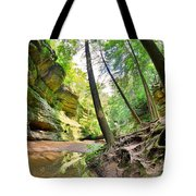 The Caves And Trail At Old Man's Cave Hocking Hills Ohio Tote Bag