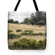 The Central Coast In May Tote Bag