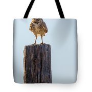 The Chairman Of The Board Tote Bag