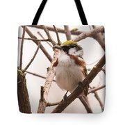 The Chestnut Warbler Tote Bag