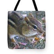 The Chipmunk Tote Bag by Danielle Allard
