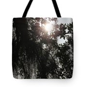 The Cleansing Tote Bag