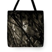 The Cold Morning Tote Bag