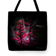 The Color Beautiful Tote Bag