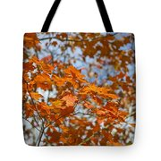 The Color Of Fall 1 Tote Bag