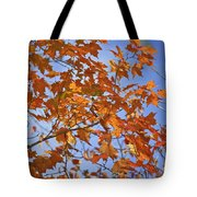 The Color Of Fall 2 Tote Bag