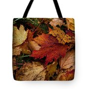 The Color Of Fall Tote Bag