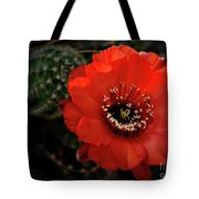 The Color Red Always Makes Smile Tote Bag