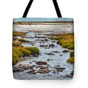 The Colorado Tundra Tote Bag