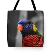 The Colorful Bird Tote Bag