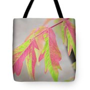 The Colors Of Shumac 2 Tote Bag