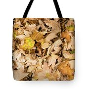 The Colors Of The Leaves In Autumn Tote Bag