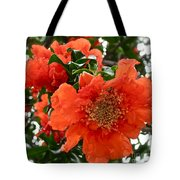 The Colour Orange Tote Bag