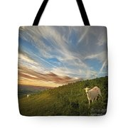 The Colours Of The Evening Tote Bag by Angel  Tarantella