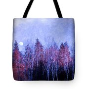 The Colours Of The Moon Tote Bag