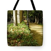 The Coming Of Autumn Tote Bag
