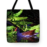 The Common Gallinule Tote Bag