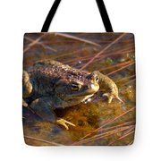 The Common Toad 1 Tote Bag