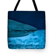 The Constant Search For Food Tote Bag