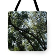 The Contours Of Refuge Tote Bag