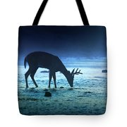 The Cool Of The Night - Square Tote Bag