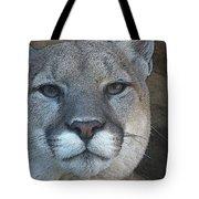The Cougar 3 Tote Bag