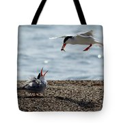 The Courtship Feeding - Series 1 Of 3 Tote Bag