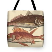 The Croker (perca Undulata) Tote Bag