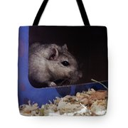 The Crumpet Show Tote Bag
