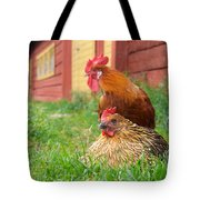 The Curious Cock And The Jealous Hen In The Mystery Of The Black Feather Tote Bag