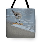 The Curious Little Sanderling 1 Tote Bag