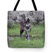 The Curtsy Tote Bag