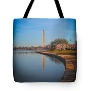 The Curve Of The Basin Tote Bag