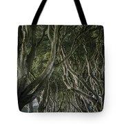 The Dark Hedges V Tote Bag