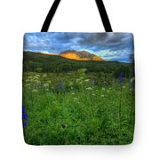 The Dawning Of Majesty Tote Bag