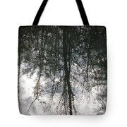 The Devic Pool 1 Tote Bag